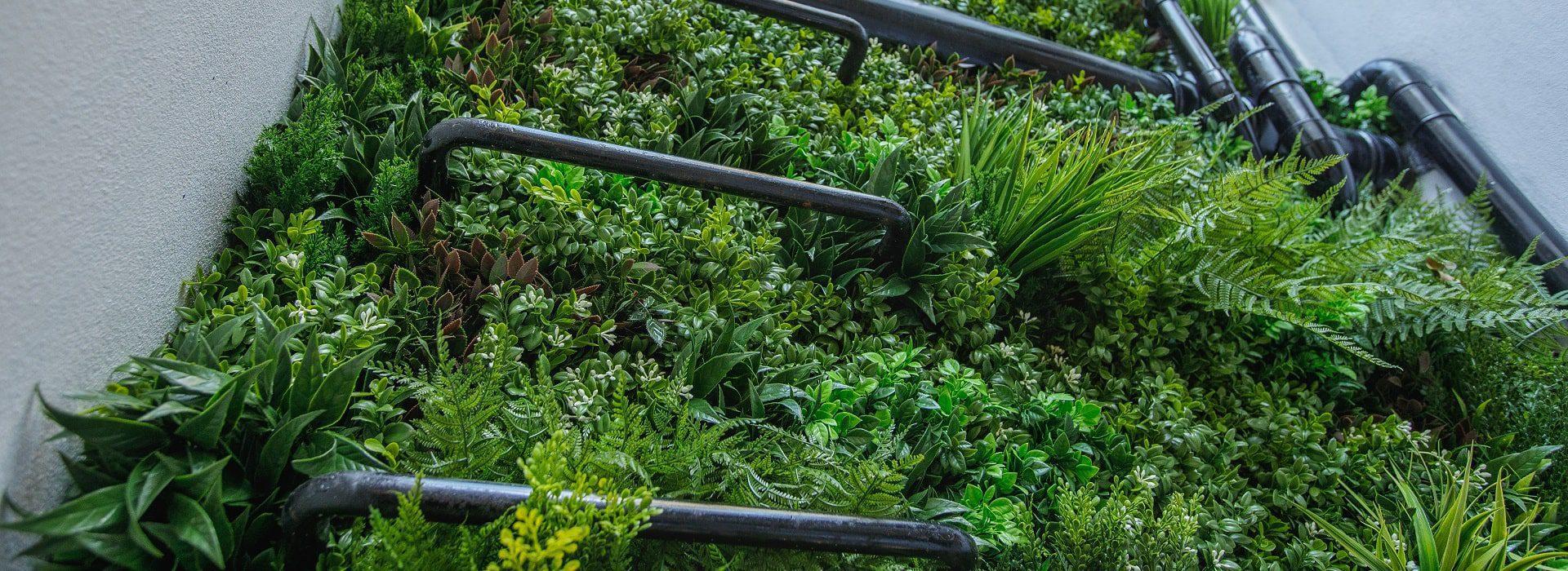 Lightwell Vertical Green Wall