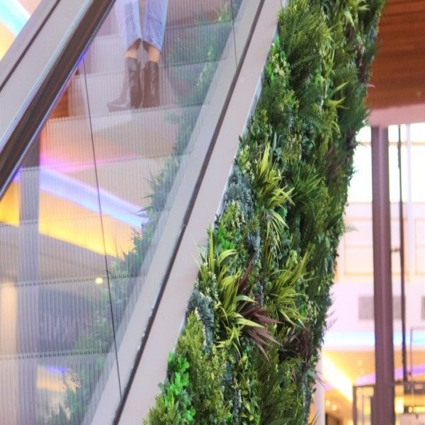 Innovative Green Escalator