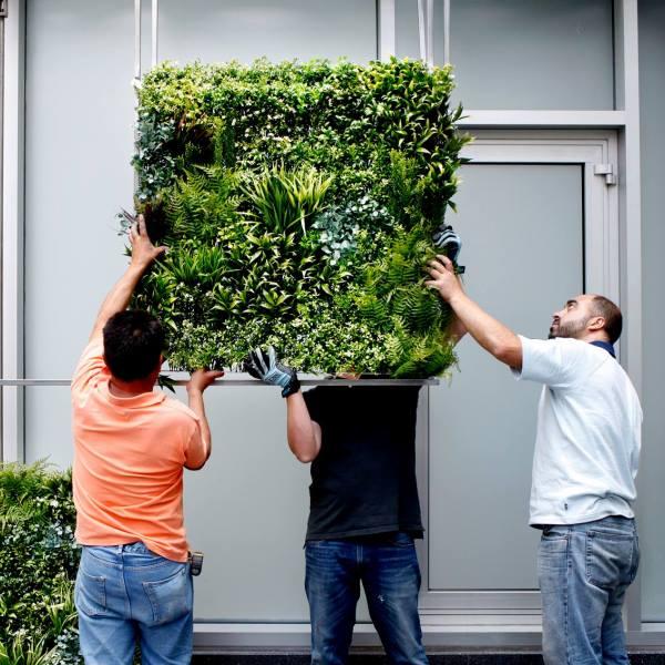 Chic Green Walls