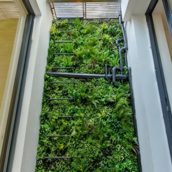 Green Wall Ladder Privacy Screen
