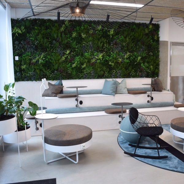 Furniture Store Green Wall